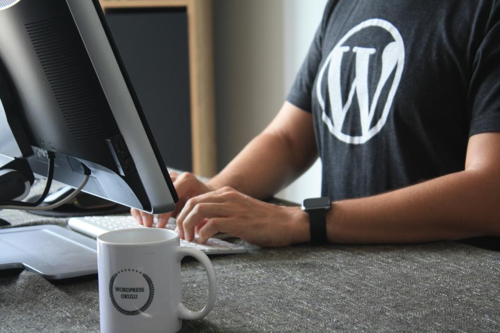 meilleurs thèmes WordPress